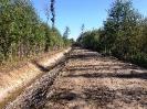 Meža meliorācijas sistēmas
