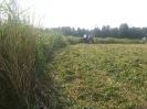 Pļavu nopļaušana  un  nopļautās zāles sasmalcināšana un izkliedēšana dabas liegumā